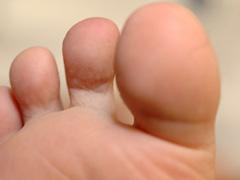 リフレクソロジーの足裏図の画像