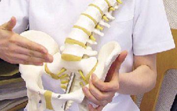 脊椎ハウス